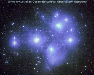 The Pleiades - copyright AAO/ROE