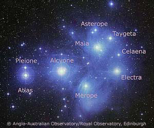 Named stars in The Pleiades - copyright AAO/ROE